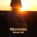 Zostan Tak/Mikromusic