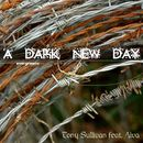 Evergreens - A Dark New Day/Tony Sullivan