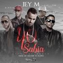 Yo sabía (feat. Alexis & Fido, De La Ghetto y Carlitos Rossy) [Remix]/Jey M