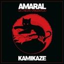 Kamikaze/Amaral