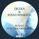 Runnin' (feat. El Chino Dreadlion) [Remixes]/DJ Chus
