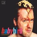 Cornershop/Babybird