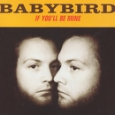 If You'll Be Mine/Babybird