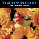 There's Something Going On/Babybird