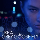 Like A Grey Goose Fly/Eye Yanin