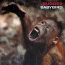Bugged/Babybird