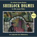 Die neuen Fälle, Fall 29: Im Labyrinth des Wahnsinns/Sherlock Holmes