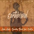 Earthbound/Amir Arab - Sunalley Project