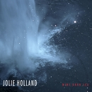 Wine Dark Sea/Jolie Holland
