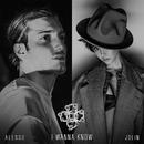 I Wanna Know (feat. Jolin Tsai)/Alesso