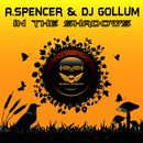 In the Shadows/A. Spencer / DJ Gollum
