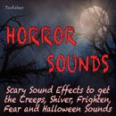 Horror Sounds - Scary Sound Effects to Get the Creeps, Shiver, Frighten, Fear and Halloween Sounds/Todster
