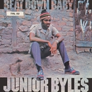 Beat Down Babylon/Junior Byles