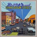 Shakedown Street/Grateful Dead