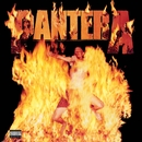 Reinventing The Steel/Pantera