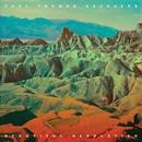 Beautiful Desolation/Paul Thomas Saunders