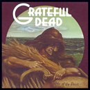 Wake Of The Flood/Grateful Dead