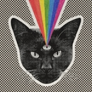 Black Cat/Never Shout Never