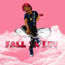 Fall In Luv/Yvng Swag