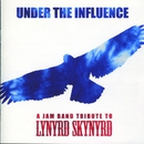 Under the Influence: A Jam Band Tribute to Lynyrd Skynyrd/VARIOUS ARTISTS
