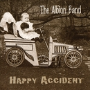 Happy Accident/The Albion Band