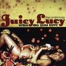 Who Do You Love - The Anthology/Juicy Lucy
