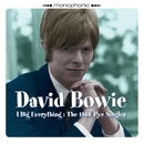 I Dig Everything: The 1966 Pye Singles/David Bowie