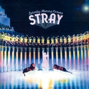 Saturday Morning Pictures (Expanded Edition)/Stray
