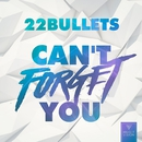 Can't Forget You/22 Bullets