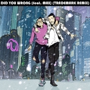 Did You Wrong (feat. MAX) [Trademark Remix]/Sweater Beats