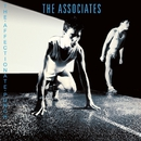 The Affectionate Punch/The Associates