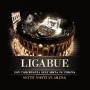 Non è tempo per noi (Live)/Ligabue