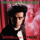 The Singer/Nick Cave & The Bad Seeds