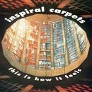 Uniform/Inspiral Carpets