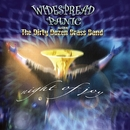Driving Song (Live At Fox Theatre, Atlanta 5/9/06)/Widespread Panic