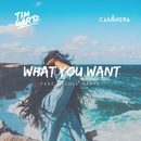What You Want  (feat. Nicole Gartz)/Tim Gartz & Cammora
