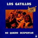 Héroes de los 80. No quiero despertar (Remasterizado 2016)/Los Gatillos