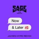 Now and Later (James Hype Remix)/Sage The Gemini