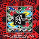 Get Physical Presents: Africa Gets Physical, Vol. 1 - Mixed by Ryan Murgatroyd/Ryan Murgatroyd