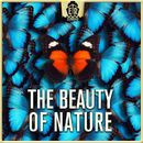 Beauty of Nature - Cheerful and Easygoing Acoustic Guitar Folk/Anselm Kreuzer / Markus Segschneider