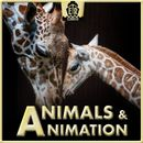 Animals & Animation - Optimistic, Folksy Ditties and Humorous Acoustic Arrangements/Felipe Mendez