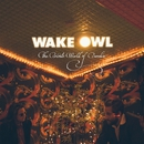 The Private World of Paradise/Wake Owl