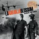 Agua negra (feat. Rodrigo Mercado & Johnny Burning)/La Naranja Blossom