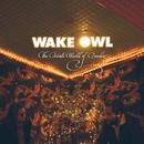 Candy/Wake Owl