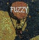 Fuzzy/Fuzzy