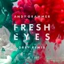 Fresh Eyes (Grey Remix)/Andy Grammer
