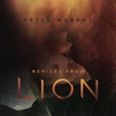 Remixes from Lion/Peter Murphy