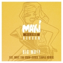 Feel What You Know (Sonik Temple Remix)/Big Muff