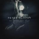 Mr. Moonlight Tour - 35 Years of Bauhaus (Live)/Peter Murphy