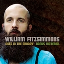 Gold in the Shadow (Bonus Material)/William Fitzsimmons